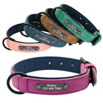 Suede Soft Leather Dog Collars em roxo, rosa, verde e azul