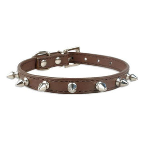 Lil Rebel Spiked Collar For Small To Medium Breed Dogs - Shop & Dog