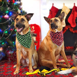 Lookin' Dashing In The Snow - Bandana de Natal Xadrez - Shop & Dog
