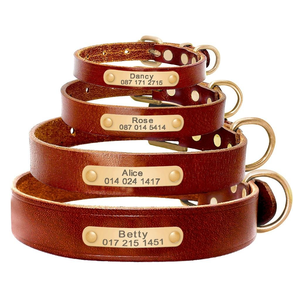 Personalised Dog ID Collar Genuine Leather - Shop & Dog