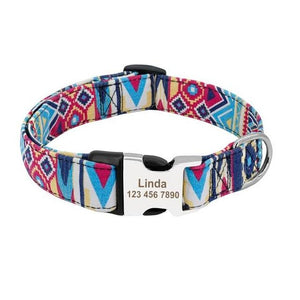 Poppin' Prints Nylon Print Dog Collar - Shop & Dog