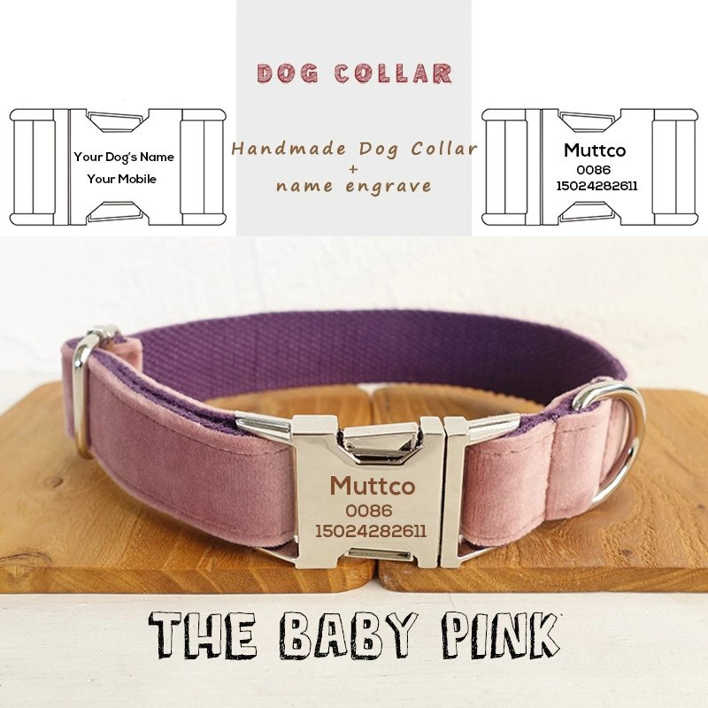 The Baby Pink Personalised Dog Collar - Shop & Dog