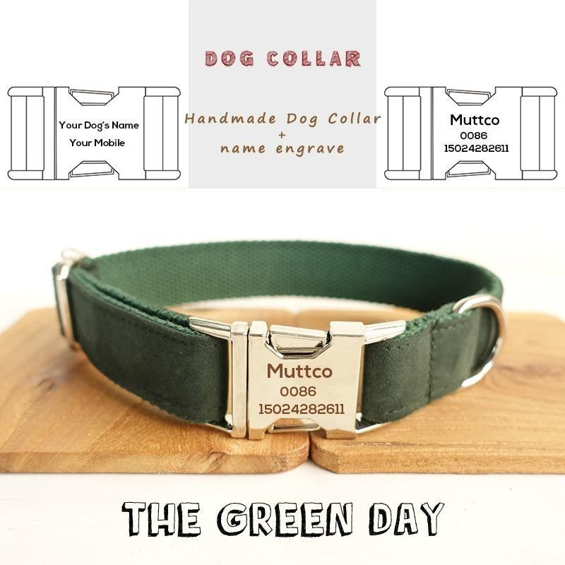 The Green Day Personalised Dog Collar - Shop & Dog