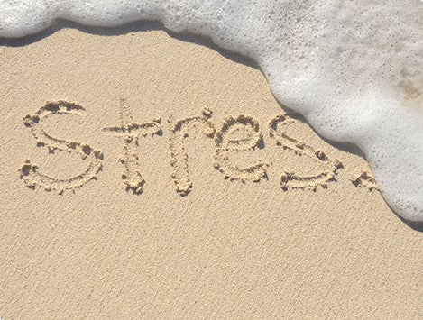 Image of stress writing on a beach.