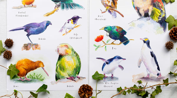 Birds of New Zealand - inspiration behind the collection