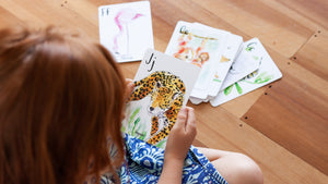 ABC animal alphabet flash cards