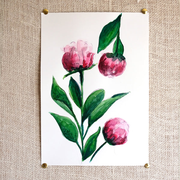 Peonies Original Painting - Raewyn Pope Illustration