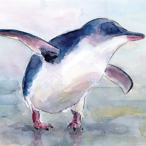 Little Blue Penguin (Kororā) - Raewyn Pope Illustration