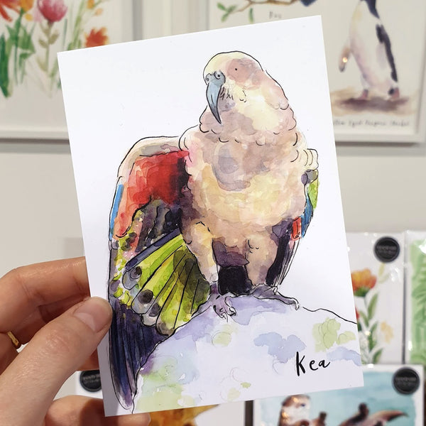 Kea - postcard - Raewyn Pope Illustration