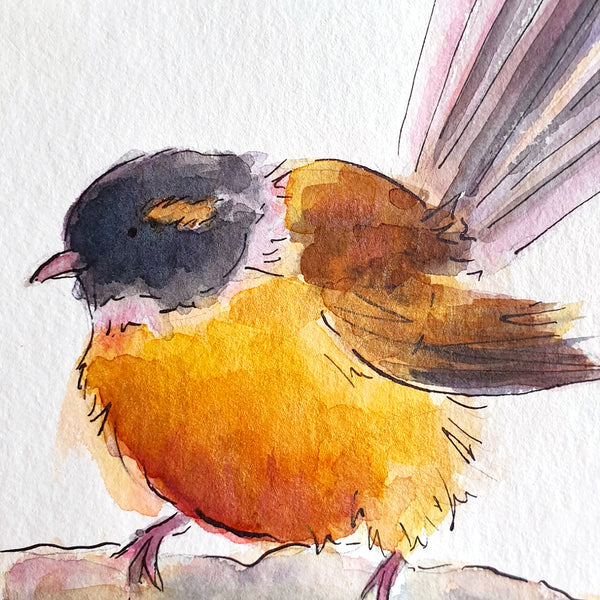 Fantail (Pīwakawaka) - original painting - Raewyn Pope Illustration