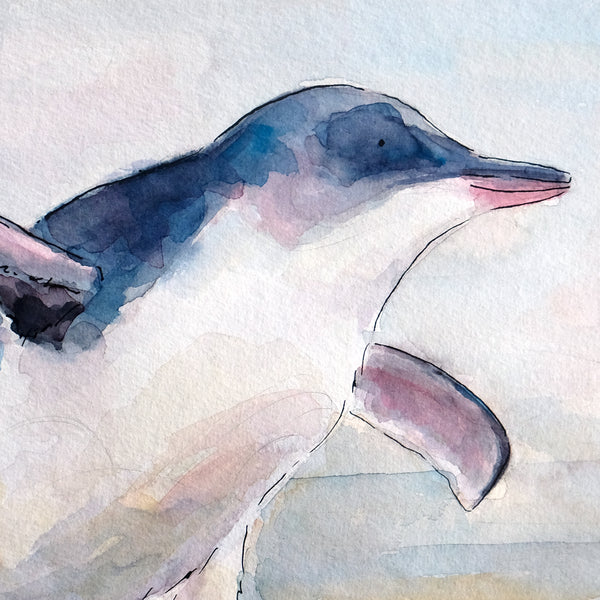 Little Penguin (Kororā) - original painting - Raewyn Pope Illustration