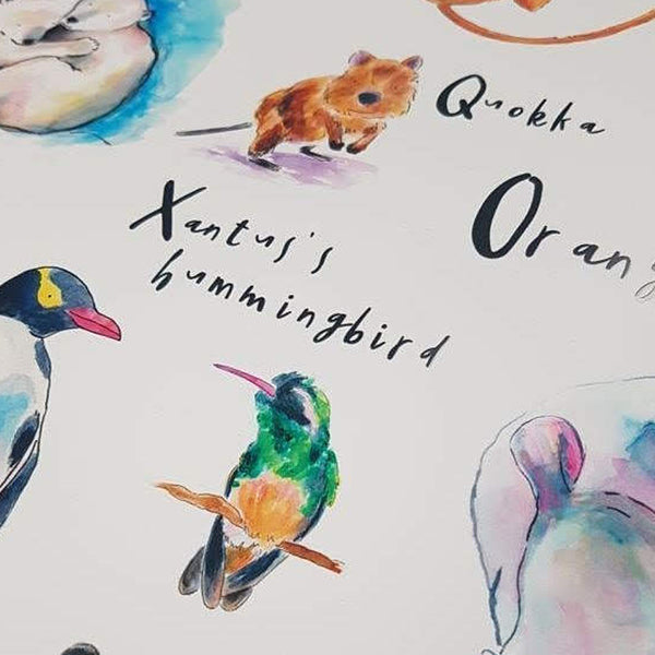 ABC of Animals - Raewyn Pope Illustration