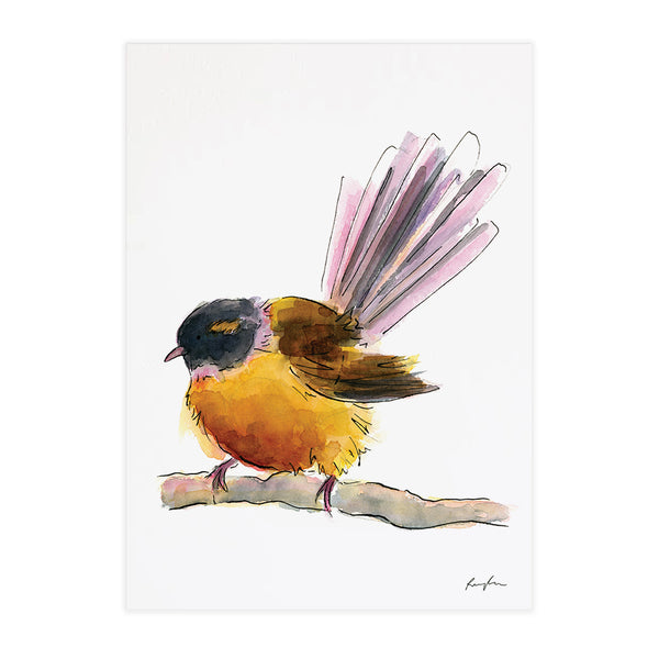 Fantail (Pīwakawaka) - Raewyn Pope Illustration