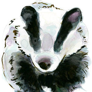 Florence the Badger