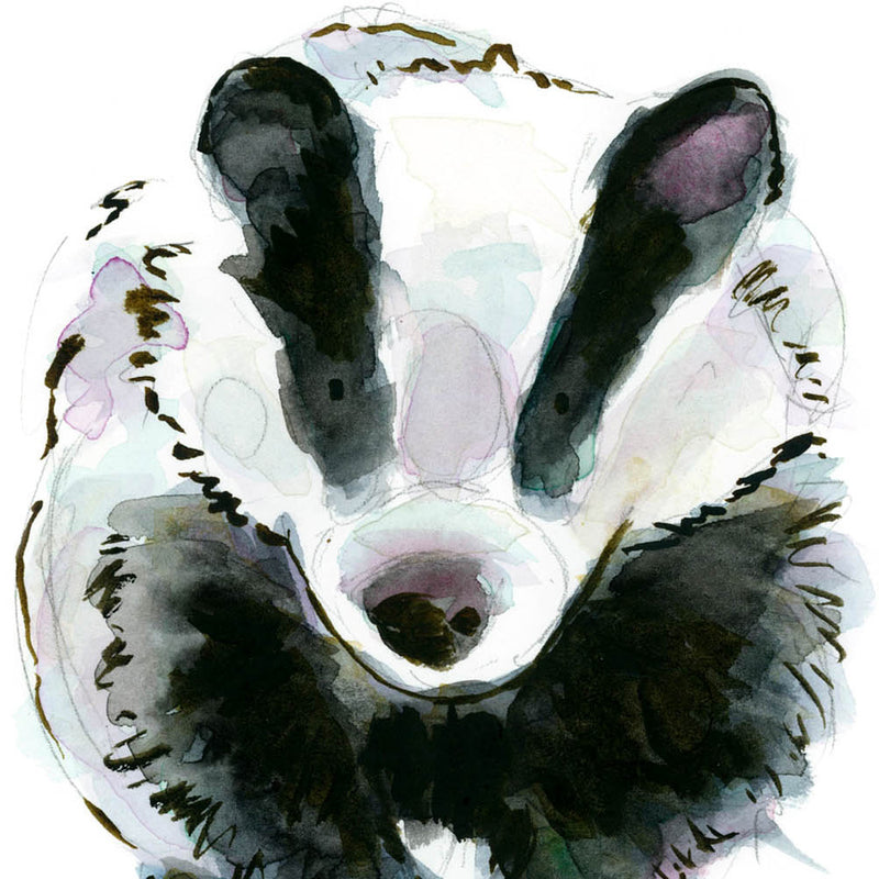 Florence the Badger - Raewyn Pope Illustration