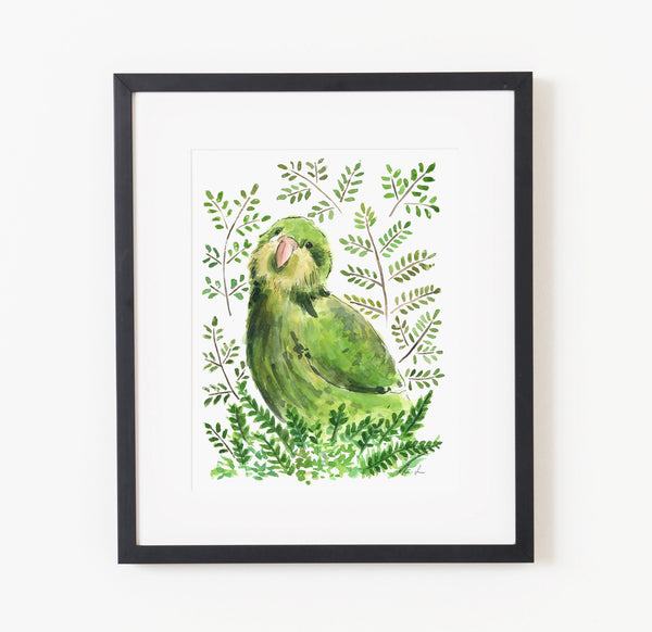 Kelly the Kakapo - Raewyn Pope Illustration