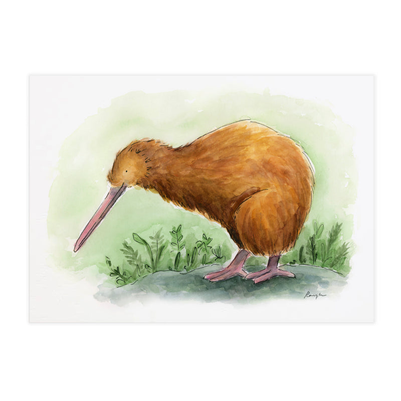 Kiwi - Raewyn Pope Illustration