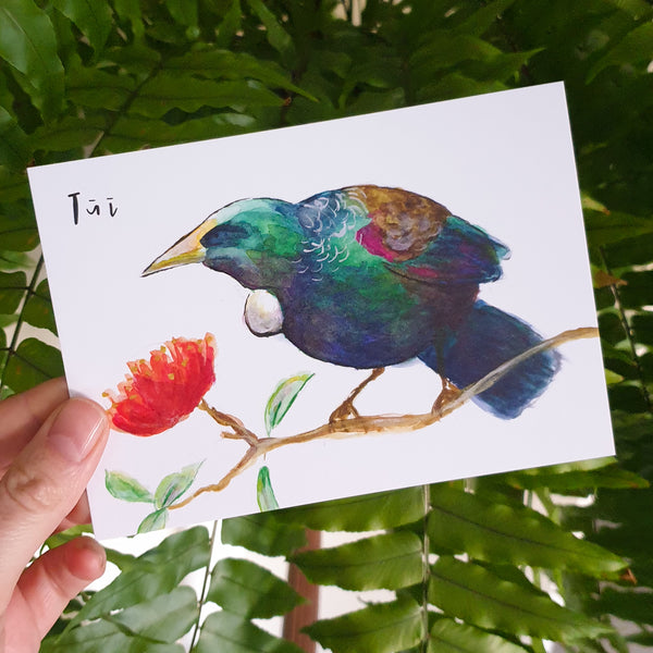 Tūī - postcard - Raewyn Pope Illustration