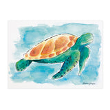Walter the Turtle - Raewyn Pope Illustration