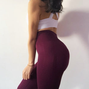 Mesh Athletic Trousers for Women - athleisurebest.com