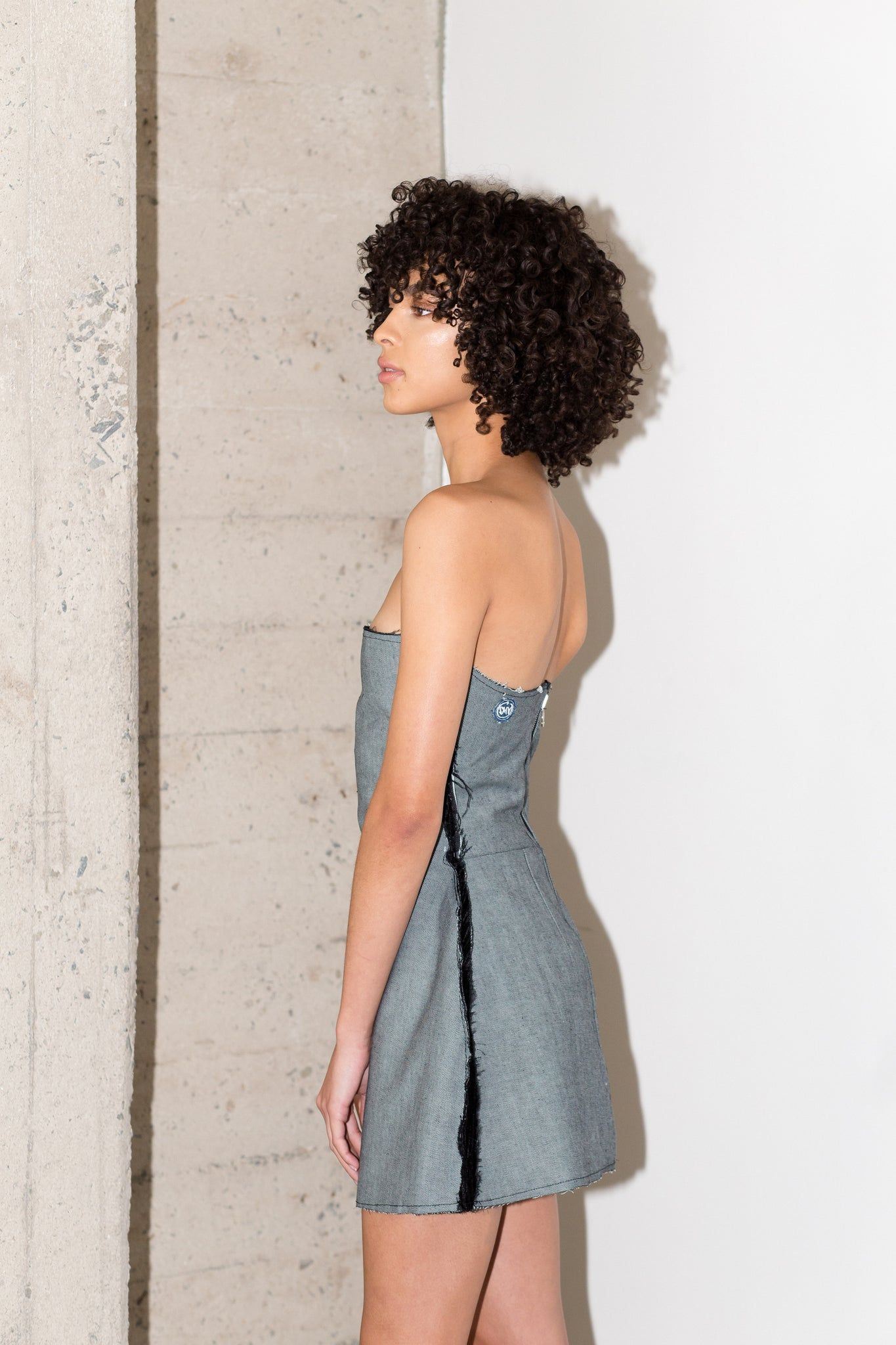 MAXIMILIAN REVERSIBLE DRESS IN SILVER BLUE RAW DENIM (PRE-ORDER)