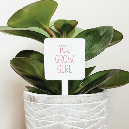 You Grow, Girl Plant Marker