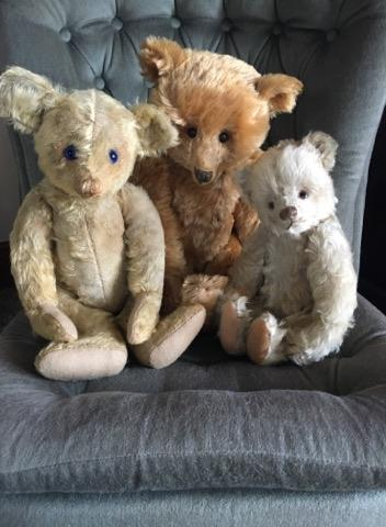 Bev Rothwell. Antique Bear Collector