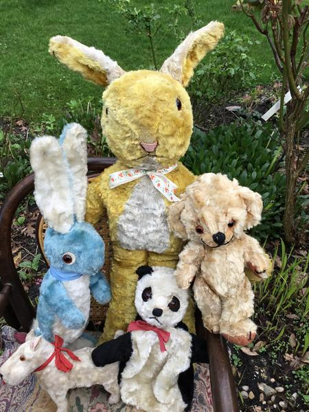 2018 Antique Susan Cane. Marigold Bears