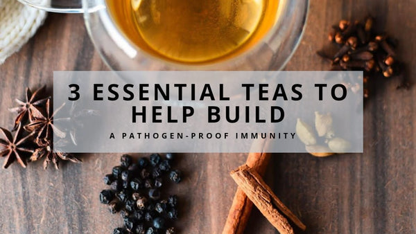 3 essential teas to help build pathogen-proof immunity