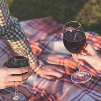 People enjoying a glass of red wine at a picnic in a park
