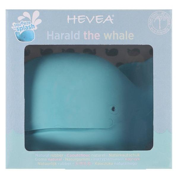 Hevea | Harald The Whale Bath Toy - Alex and Moo