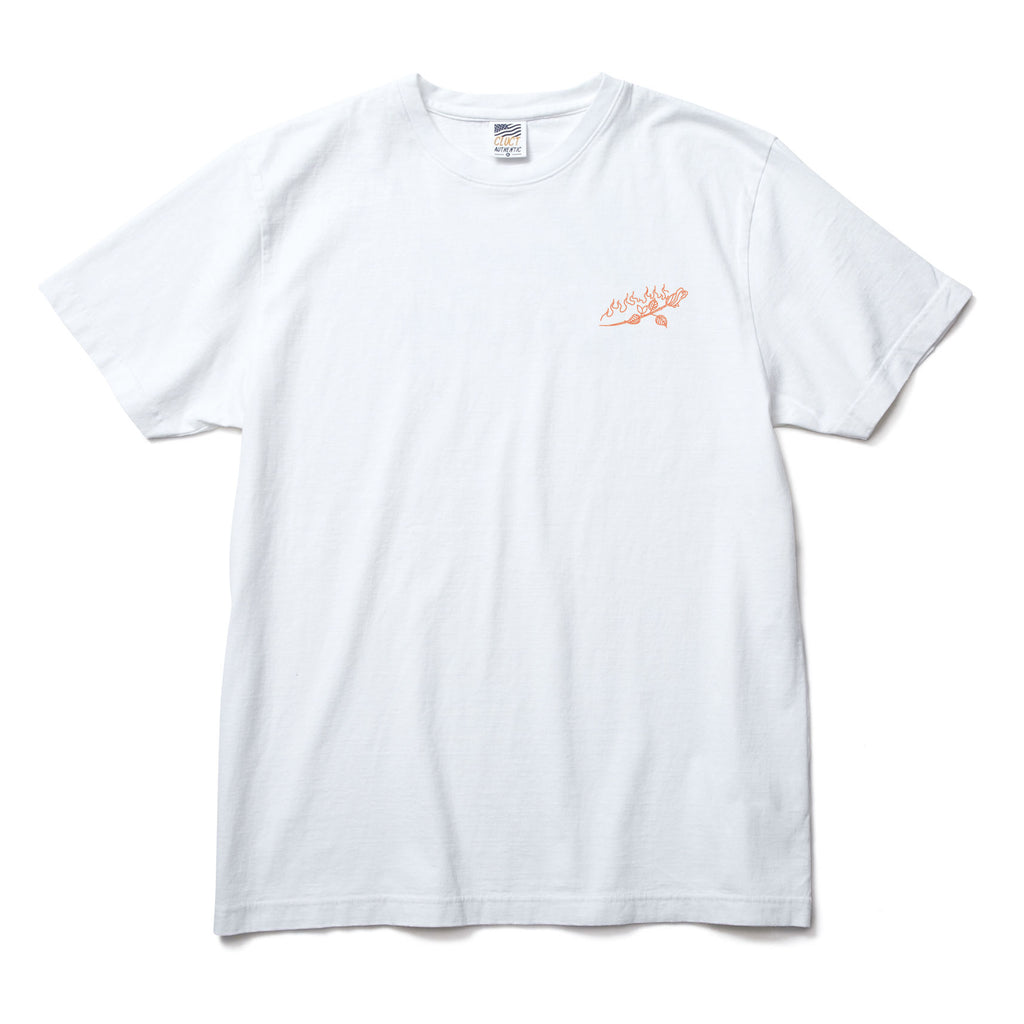 S/S TEE ROSE / SUMMER VACATION 【SPOT ITEM】