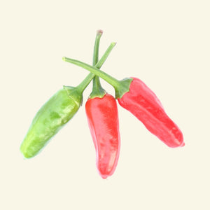 Apache F1 Hybrid Chilli Seeds - Hot Chilli - Approx 20 Seeds