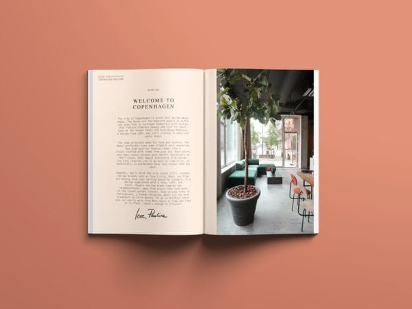 The Copenhagen Guide - Coffee Table Books