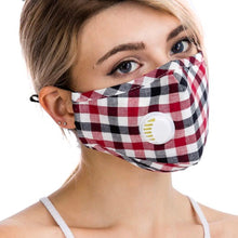 Load image into Gallery viewer, Gingham Checkered Washable Face Mask with Insert