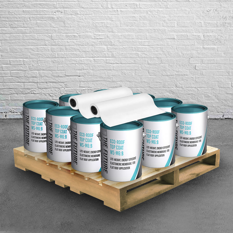 WS-M6 Flat Roof Coating