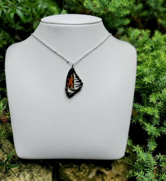 Small Madagascan Sunset Moth Necklace