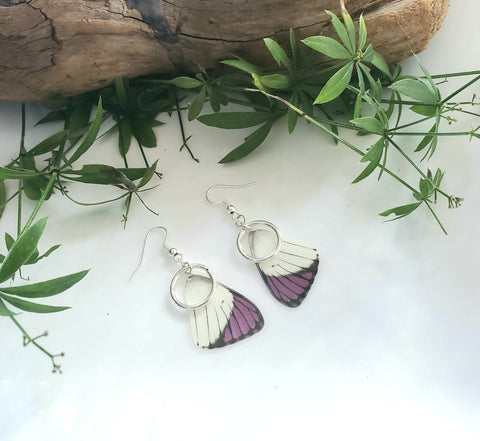 Purple Tip Butterfly Earrings with Silver Hoops