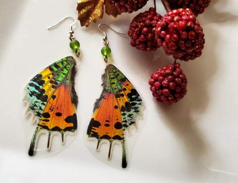 Madagascan Sunset Moth Earrings