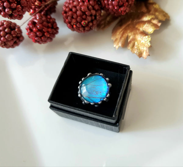 Blue Morpho Butterfly Round Adjustable Dome Ring