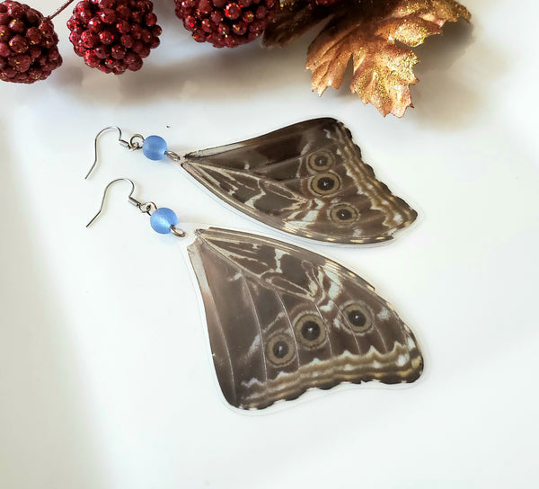 Morpho Peleides Butterfly Wing Earrings