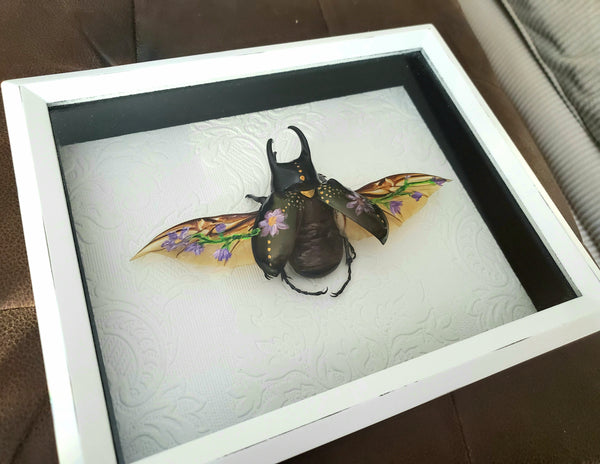 Framed Painted Rhinoceros Beetle Artwork, Three-Horned Beetle, Quality Framed Insects