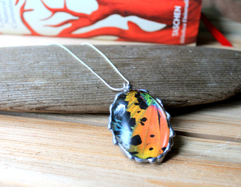 Madagascan Sunset Moth Domed Oval Pendant, Rainbow Moth Necklace, Sunset Moth Jewelry