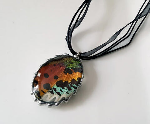 Madagascan Sunset Moth Oval Bubble Domed Pendant