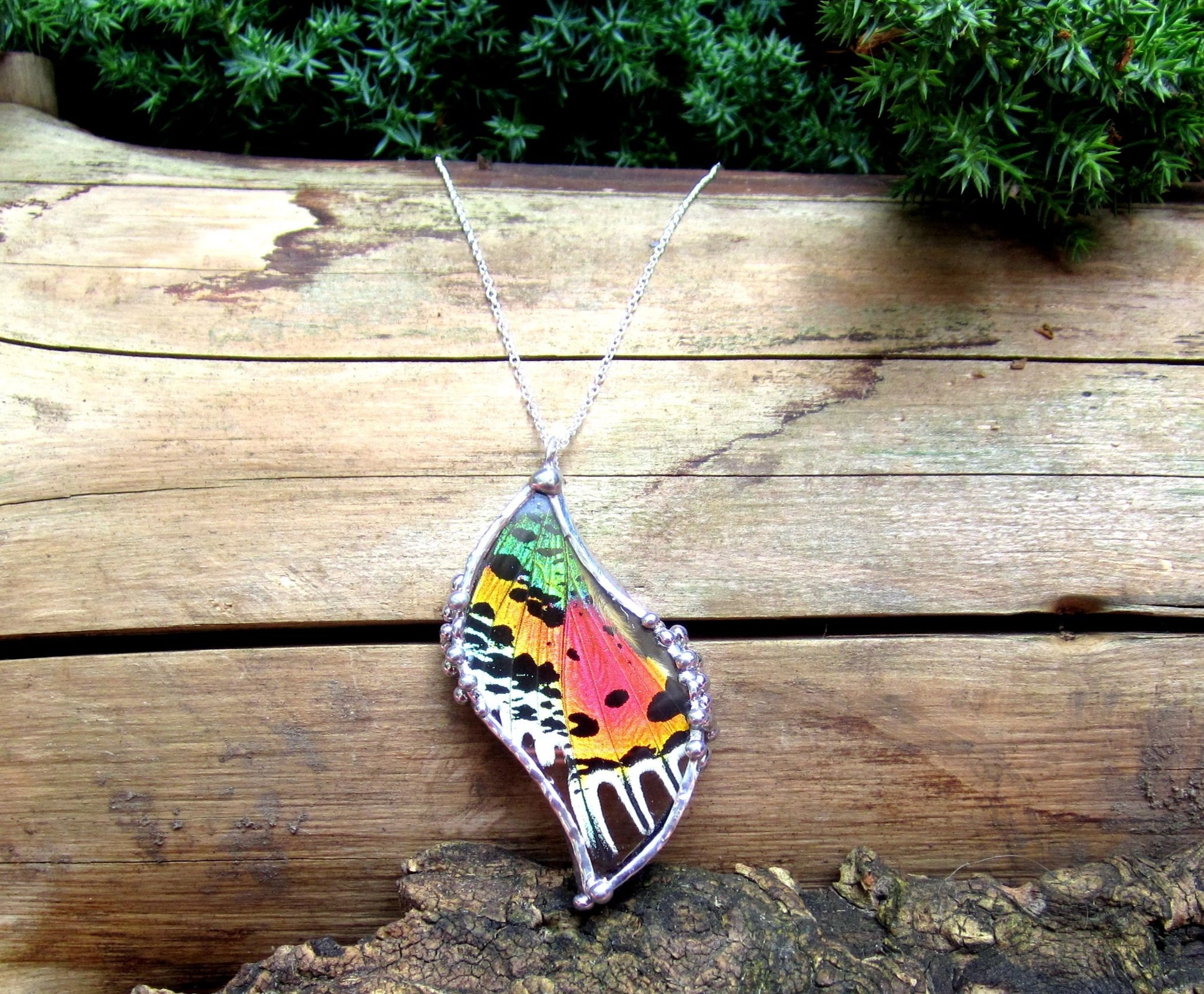 Madagascan Sunset Moth Hindwing Pendant, Real Moth Pendant, Rainbow Moth Necklace