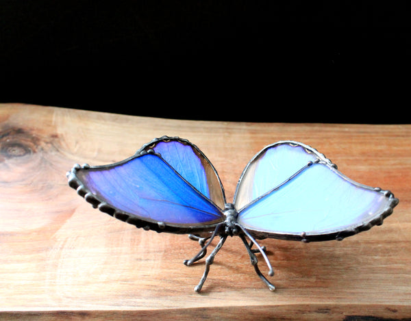 Blue Morpho Didius, Real Butterfly Wing Statuette, Butterfly Wing Decor, Table Top Butterfly