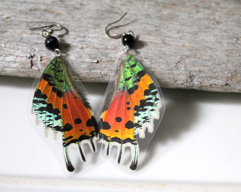 Madagascan Sunset Moth Laminated Earrings with Black Agate Bead