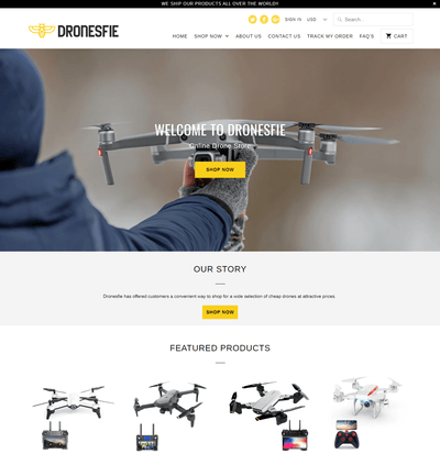Dronesfie ( The Drone Store)