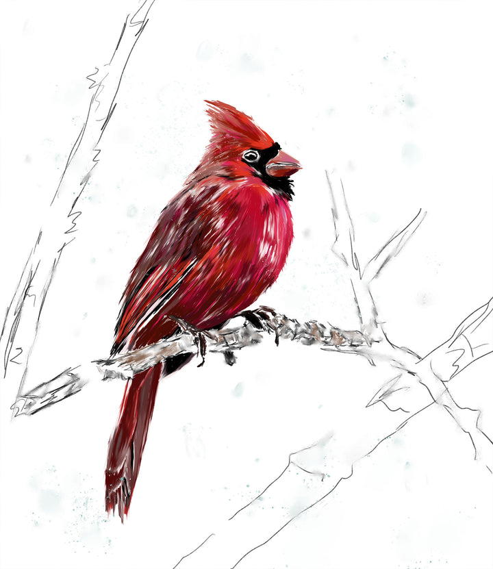 Cardinal in the Snow Print