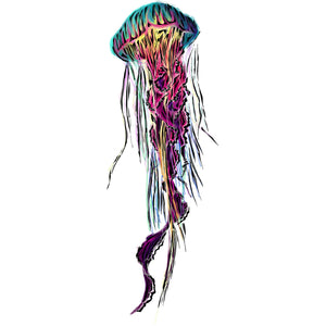 Jellyfish Sticker 4x4in